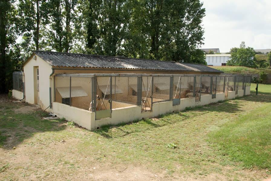 la pension pour chiens au refuge spa de poitiers. Black Bedroom Furniture Sets. Home Design Ideas